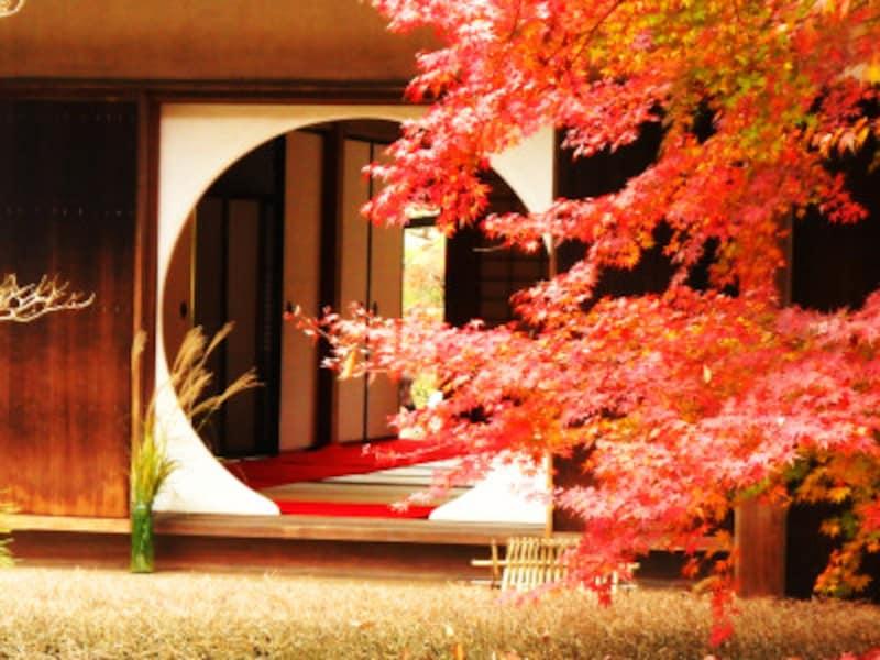 紅葉に彩られた明月院の丸窓。歴史を感じる趣