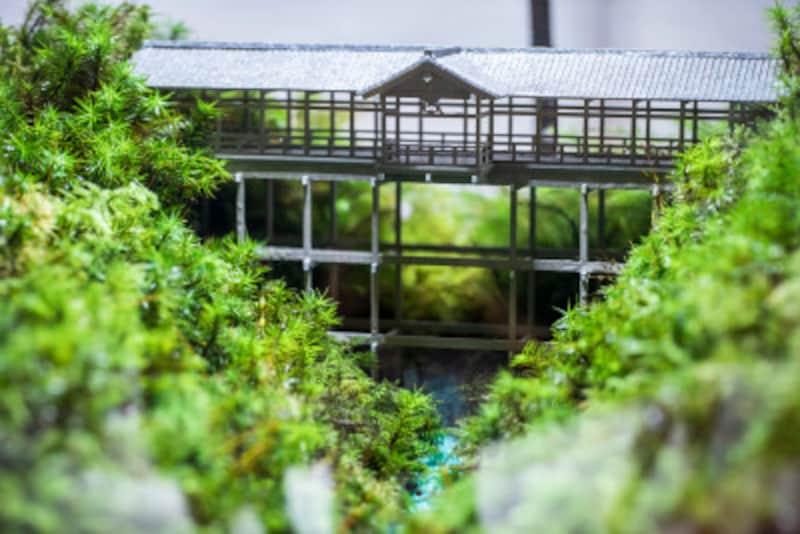 通天橋のコケ寺リウム