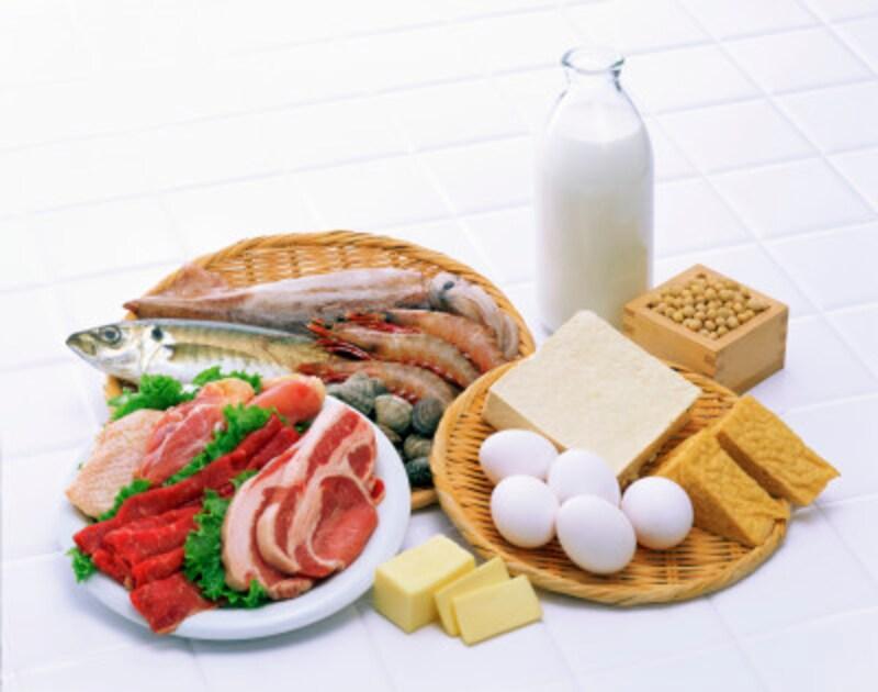 肉,魚,卵,大豆製品,たんぱく質