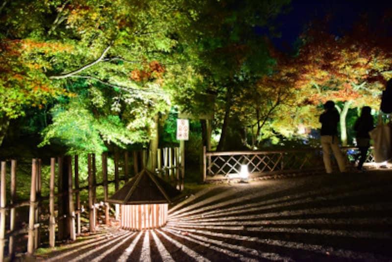 見事な紅葉ライトアップが行われることで知られる嵐山の宝厳院。2017年11月20日訪問時、庭園入口付近は、まだ緑の木が多かった