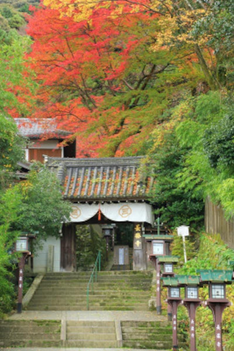祗園の花街から近いにもかかわらず、静かに紅葉が楽しめる長楽寺