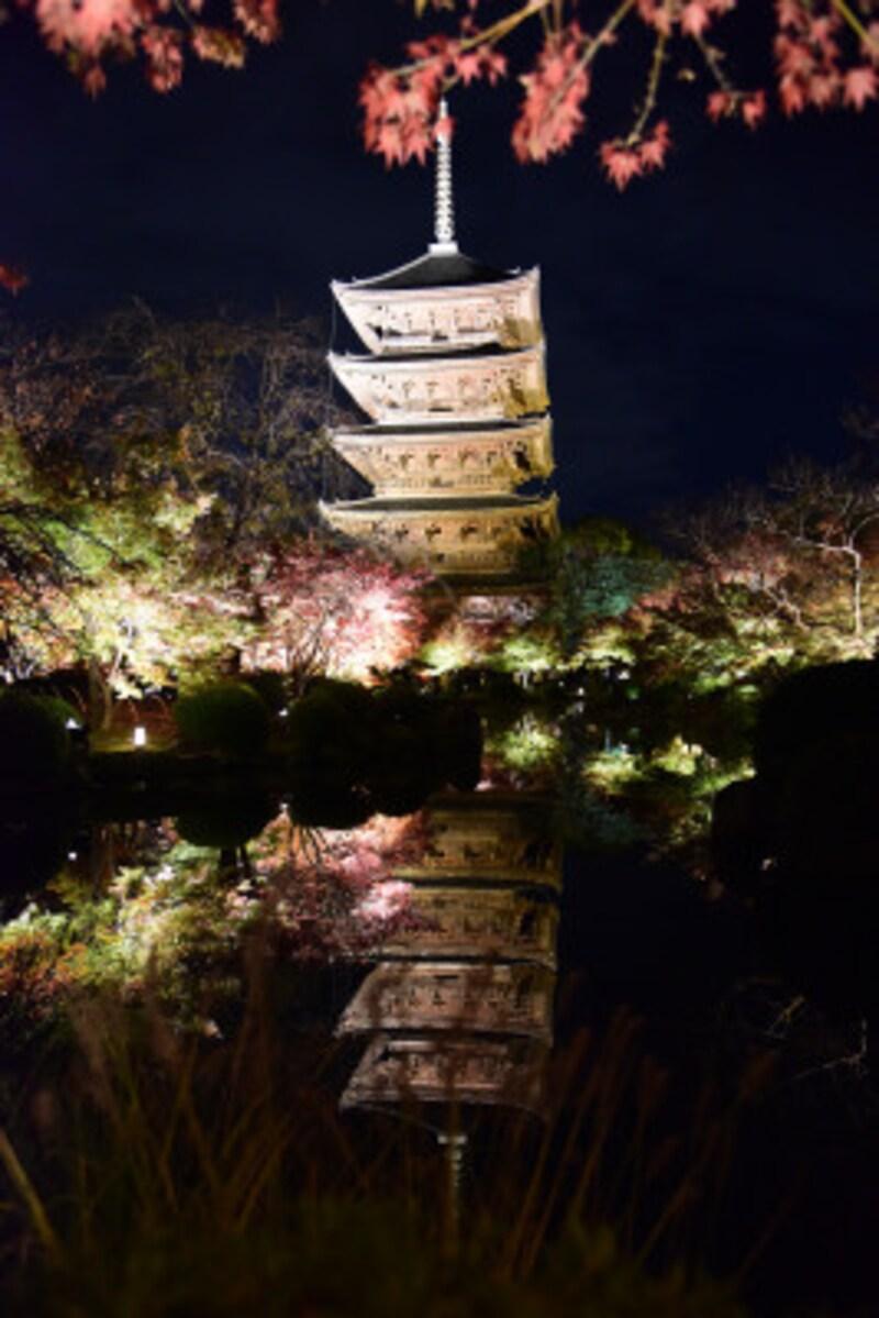 東寺の紅葉ライトアップ。五重塔と紅葉が池に映り込む