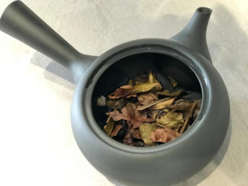 急須からも磯の香りが!急須で丁寧にお茶を淹れていただきます。