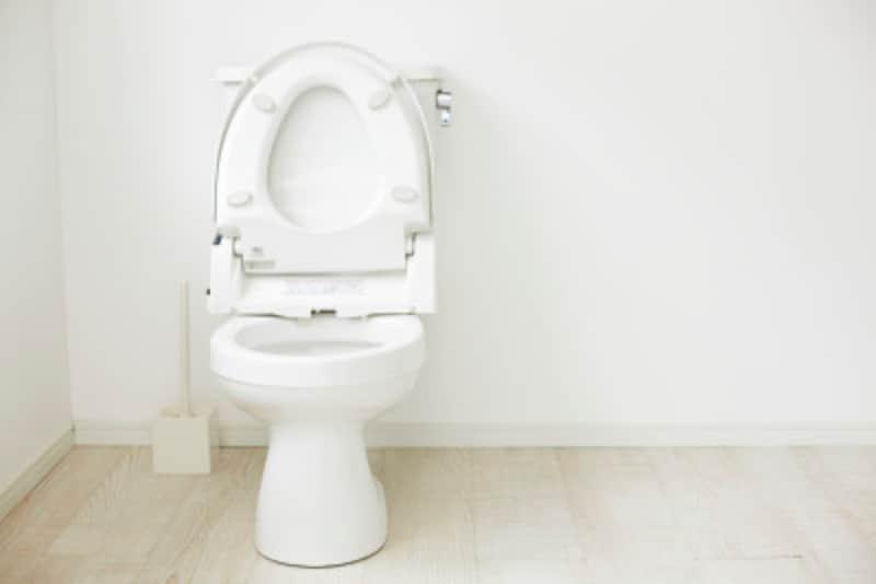 トイレ掃除:便器は複雑な形をしています。汚れが溜まりやすい箇所に気をつけないと、臭いの原因にも!