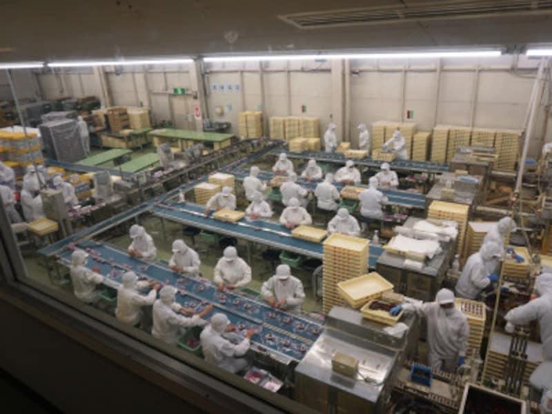 「桔梗信玄餅工場テーマパーク」での工場見学
