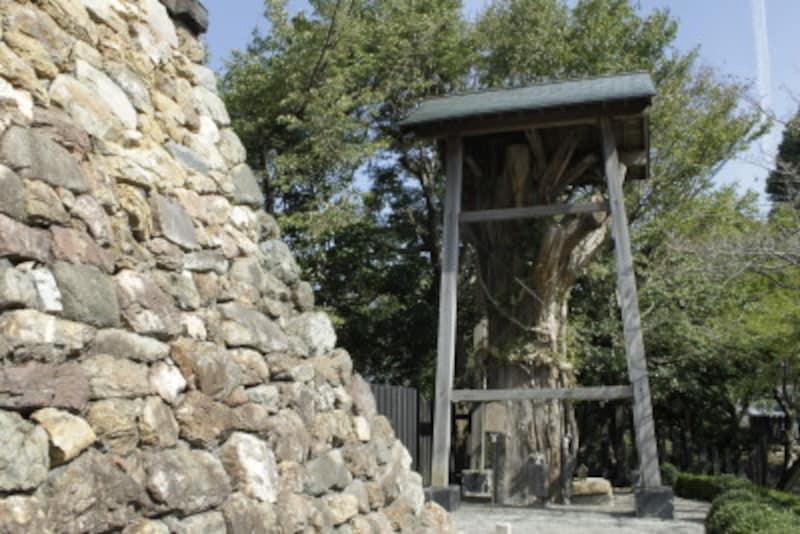 犬山城の見どころは景色だけではなく歴史を感じさせる作りが見どころだ