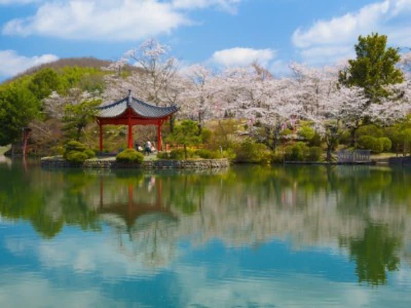 春の自然・植物をイメージする男の子の名前は、春、温、新、菖、颯などの字が人気