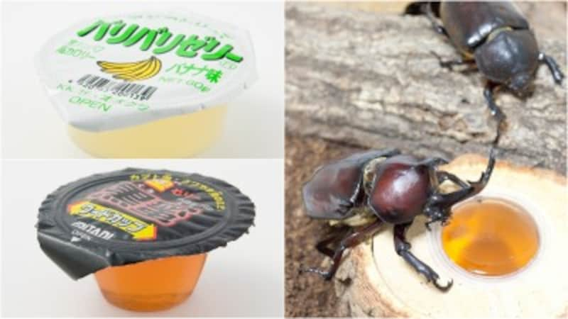 カブトムシ エサ 餌 昆虫 ゼリー たべる 食べる おすすめ バナナ