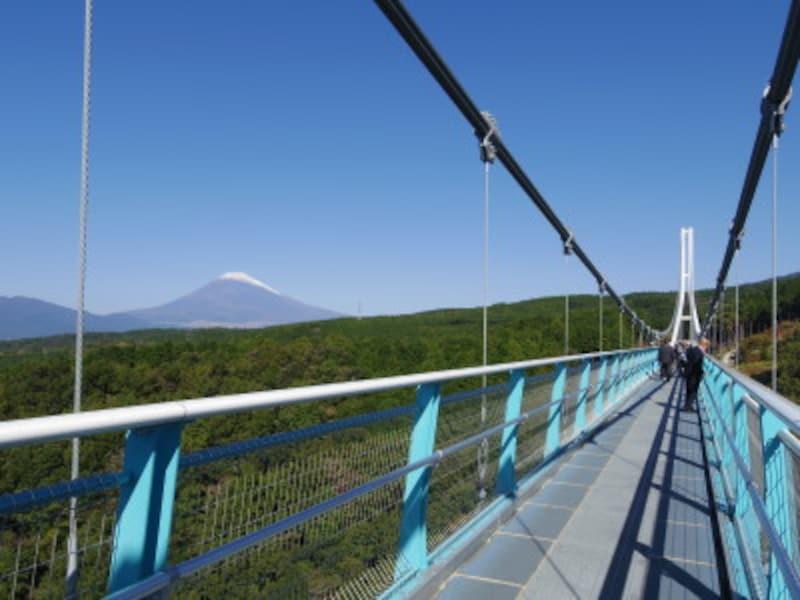橋の上から望む富士山