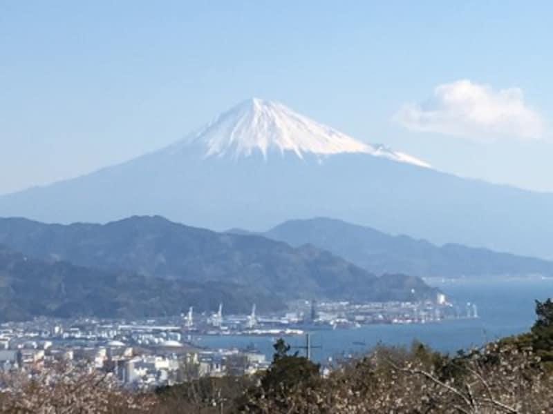 展望回廊からの富士山