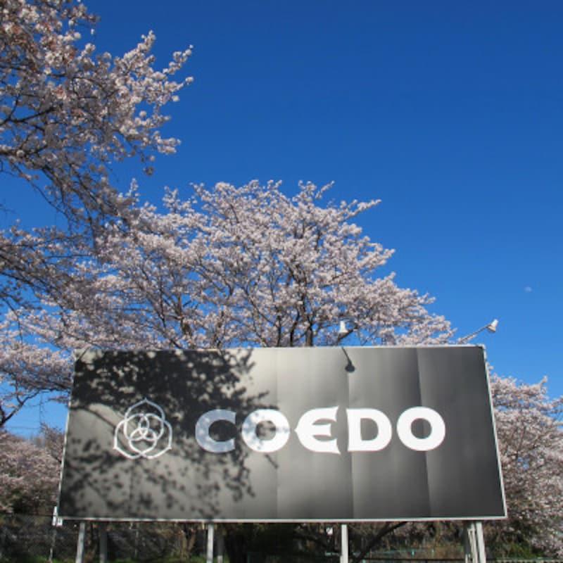 COEDO醸造所