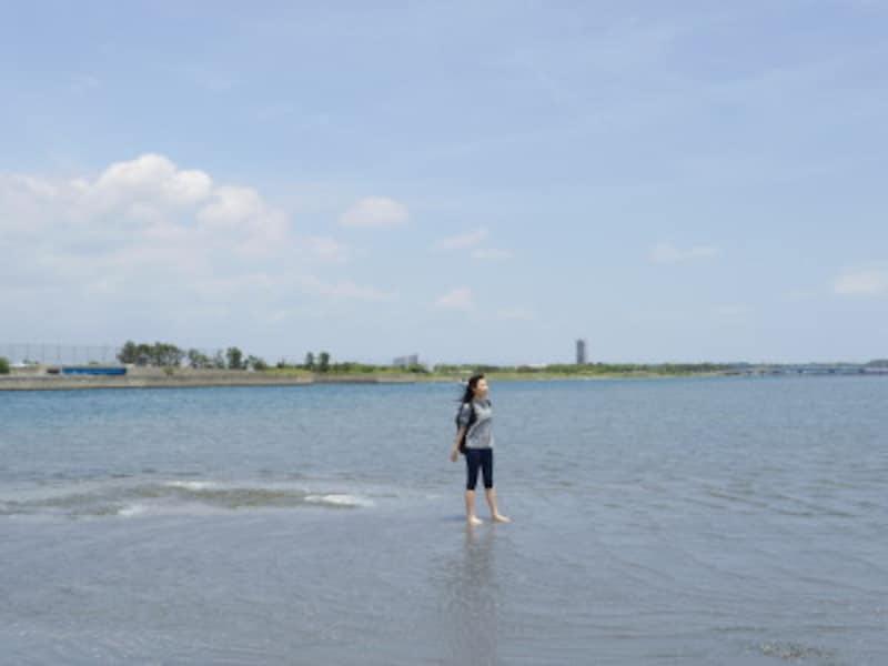 浜名湖の干潟