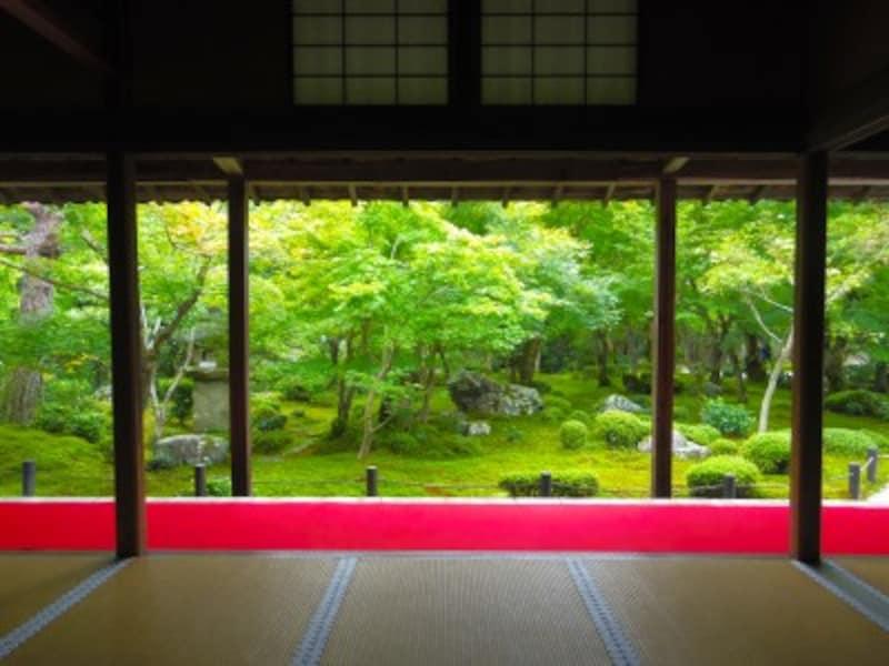 京都のお寺巡り1. 圓光寺額縁庭園