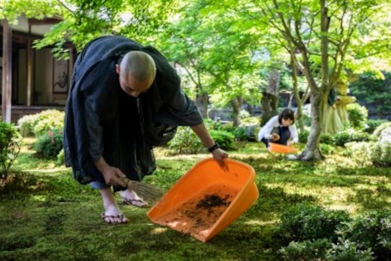 京都のお寺巡り1.圓光寺で早朝の苔庭作務