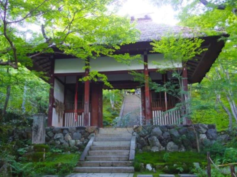 京都のお寺巡り4.常寂光寺 茅葺きの仁王門
