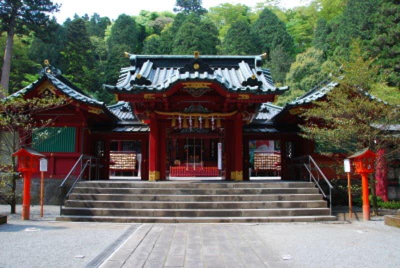 箱根ひとり旅の観光スポット:箱根神社の御本殿