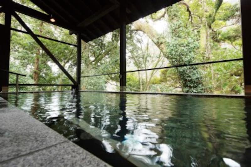 箱根のおすすめ観光スポットを紹介します!