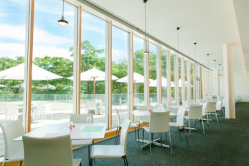 箱根ひとり旅の観光スポット:レストラン内観