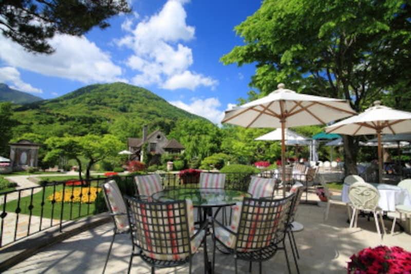 箱根ひとり旅の観光スポット:カフェ・レストラン