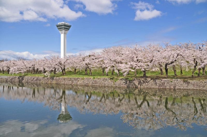 北海道の絶景パワースポット春・五稜郭タワー