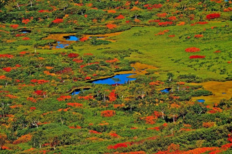 北海道の絶景パワースポット秋・ロープウェイからの景色