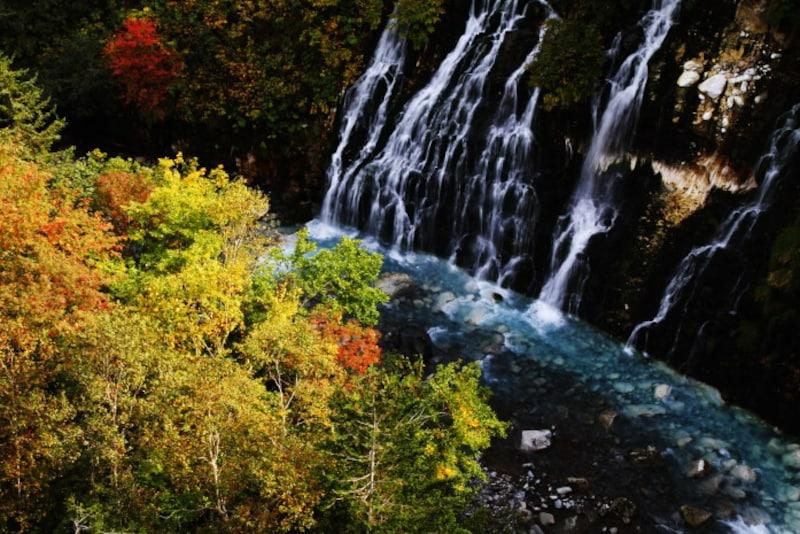 北海道の絶景パワースポット夏・青い池の源流