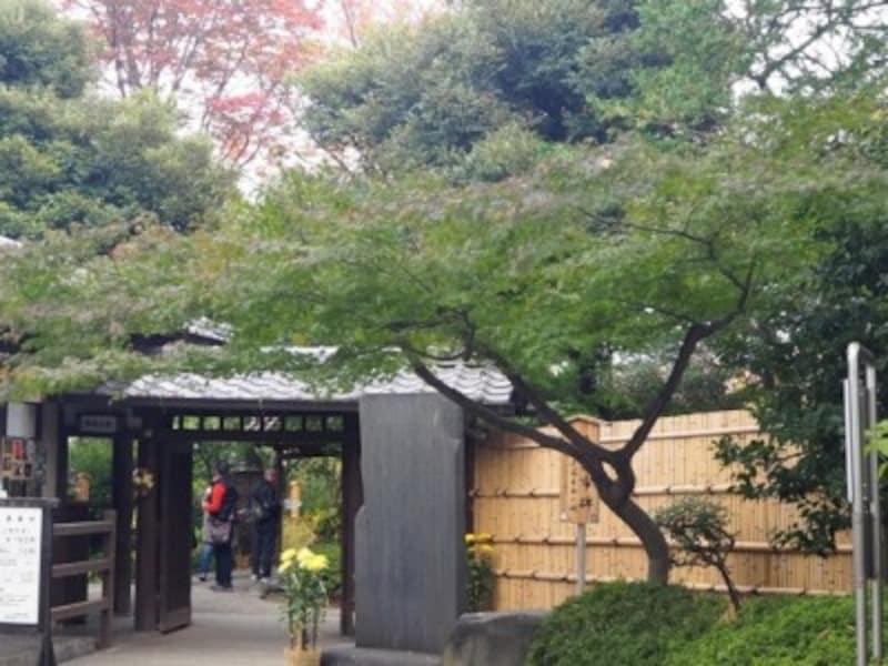 江戸時代からある向島百花園