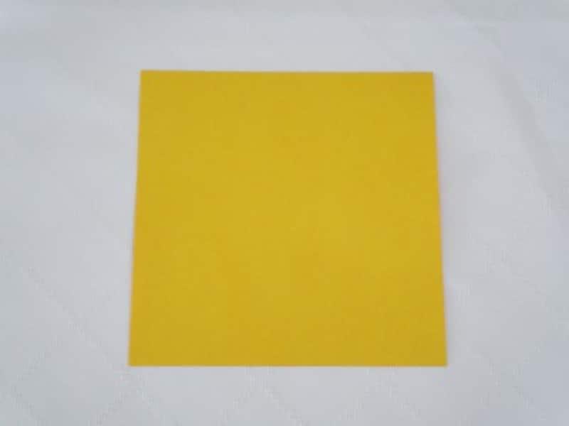 折り紙は着物の柄として見せたい方の色を上にして置きます。