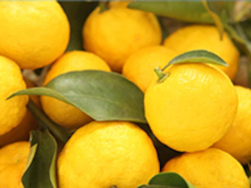 翠ボタニカル柚子