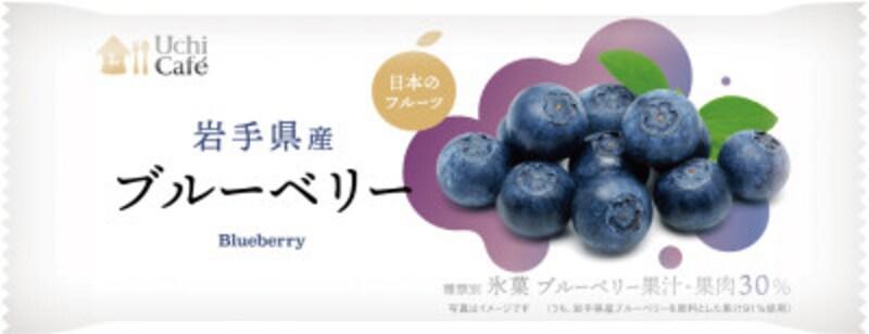 日本のフルーツ