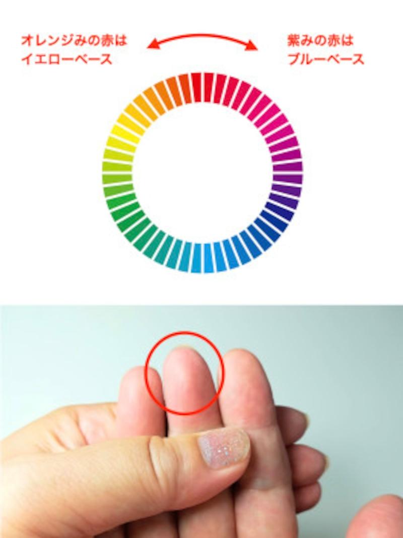 指先の血色の色がオレンジみを帯びた赤の場合はイエベ、紫みを帯びた赤の場合はブルベです