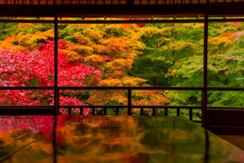 京都のおすすめ紅葉スポット情報瑠璃光院絶景ライトアップ