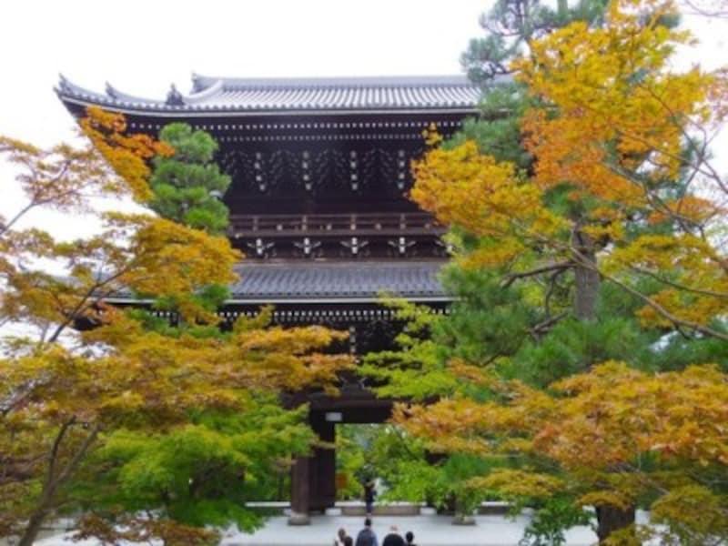 京都のおすすめ紅葉スポット情報光明寺名所