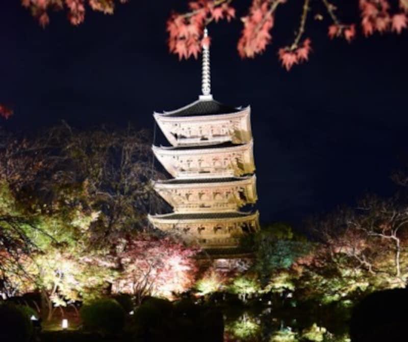 京都のおすすめ紅葉スポット情報東寺名所ライトアップ