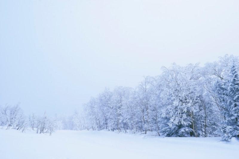 大雪のころには、雪国や山のほうで雪が降り積ります