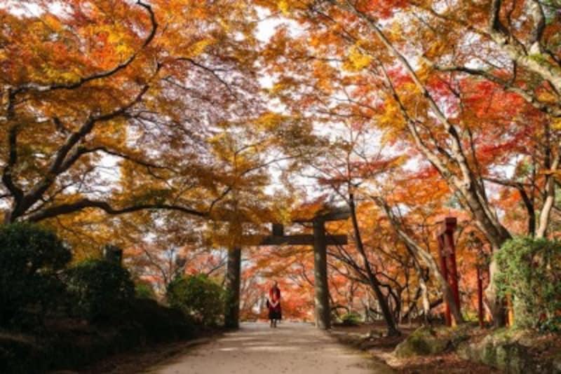 「鬼滅の刃」聖地宝満宮竈門神社(福岡県太宰府市)