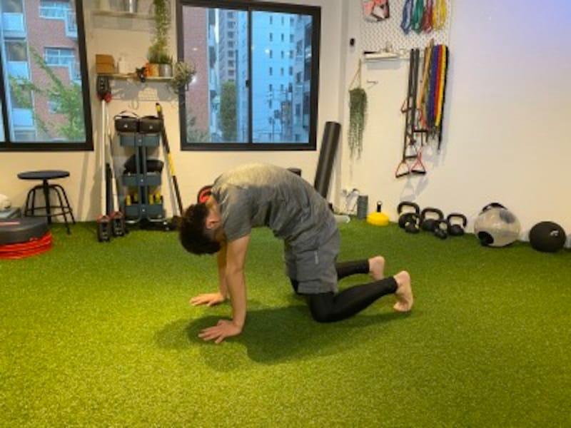 step2.四つ這いのまま腰と背中をしっかり丸めます。