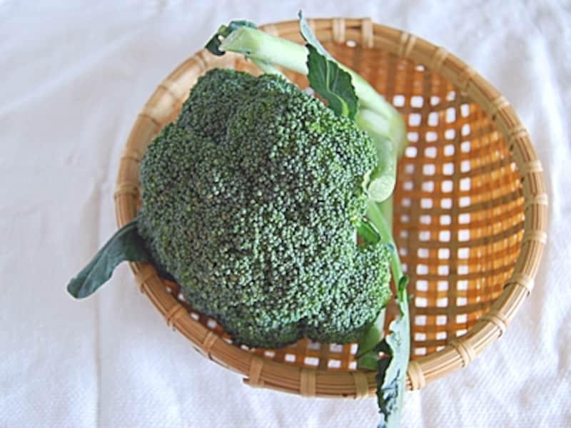 小さなつぼみがびっしりと詰まったブロッコリー。栄養の優等生です