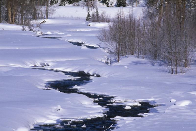 雨水/初侯:土脉潤起(つちのしょううるおいおこる)2月18日頃 雪解け水が大地を潤します