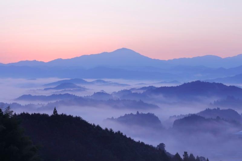 雨水/霞始靆(かすみはじめてたなびく)2月23日頃 同じような情景でも、春は霞、秋は霧と呼び分けます