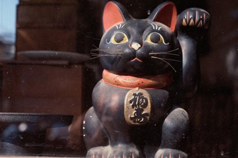 黒猫は魔除け、厄除けの力があるとされてきた