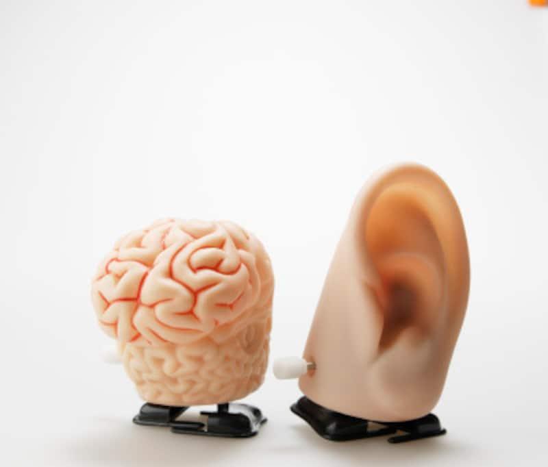 耳管開放症とは何か…メカニズム・症状・原因