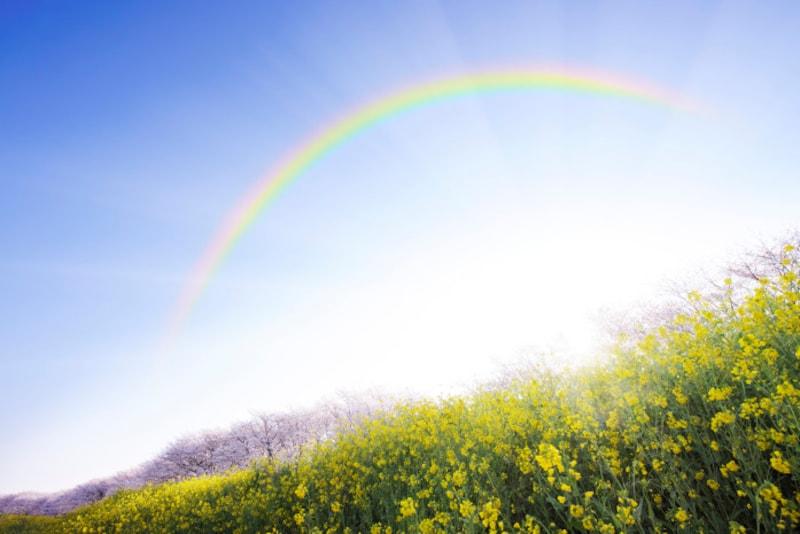 淡かった虹がくっきりと見えるようになってきます