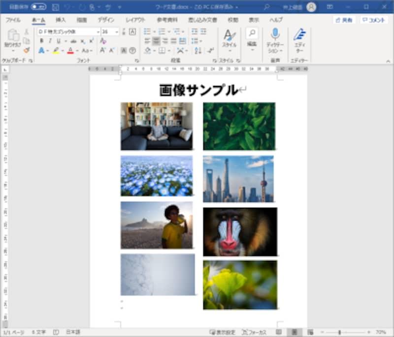 もとのワード文書です。文書中に画像を貼り付けています。この画像ファイルだけを抽出してみます。