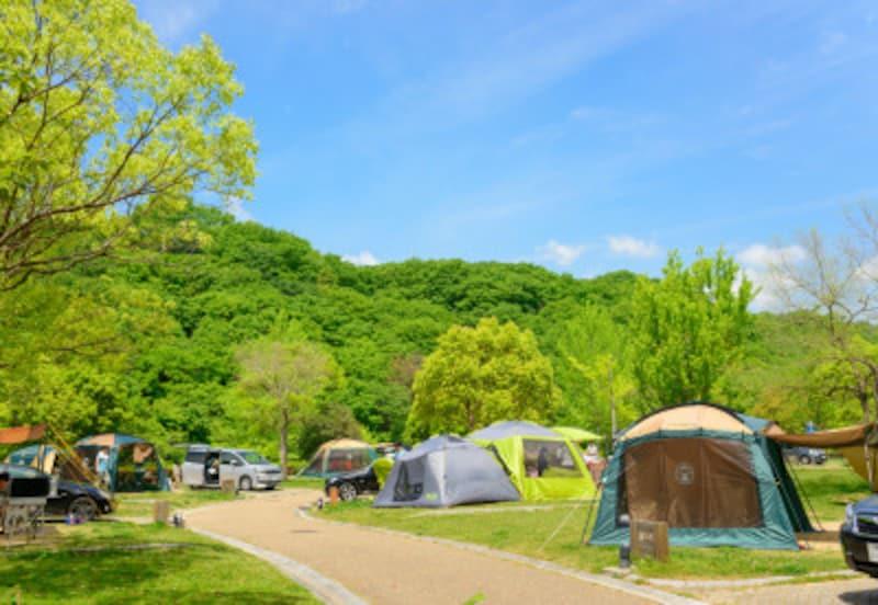 野外でのキャンプを楽しむことも