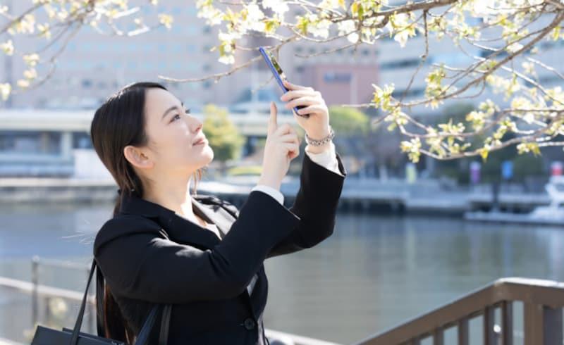 転職者が多い春、転職エージェントは使うべき?