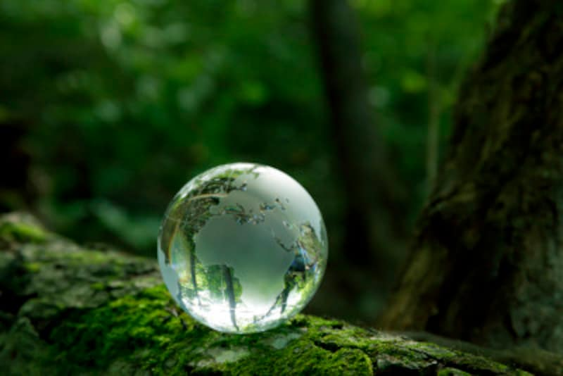 投資先を地球規模で考える