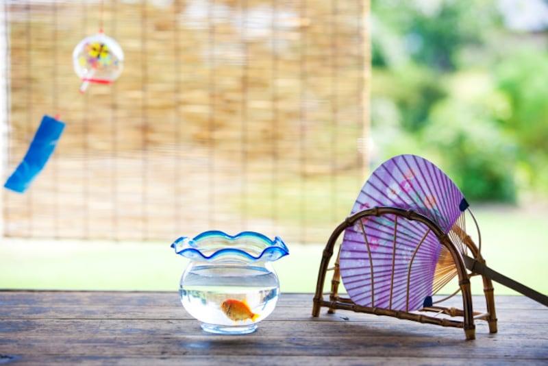風鈴、すだれ、金魚鉢、団扇など五感の涼を取り入れて