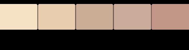 肌色のバリエーション