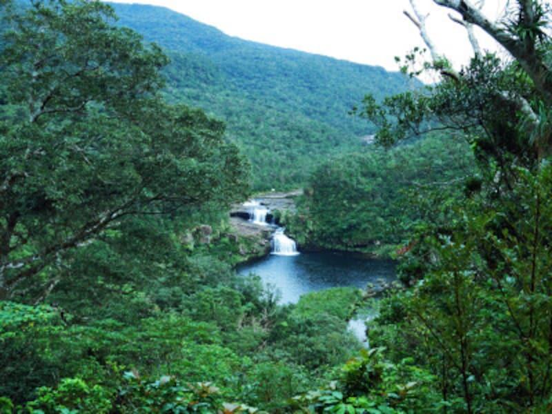 浦内川とマリユドゥの滝